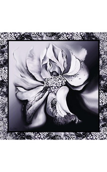 B&w hybrid rose print silk scarf 140cm by Leanne Claxton Product photo